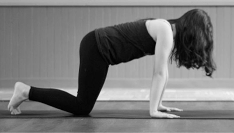 On The Mat Formal Yoga Practices For Self Regulation And Engagement Springer Publishing