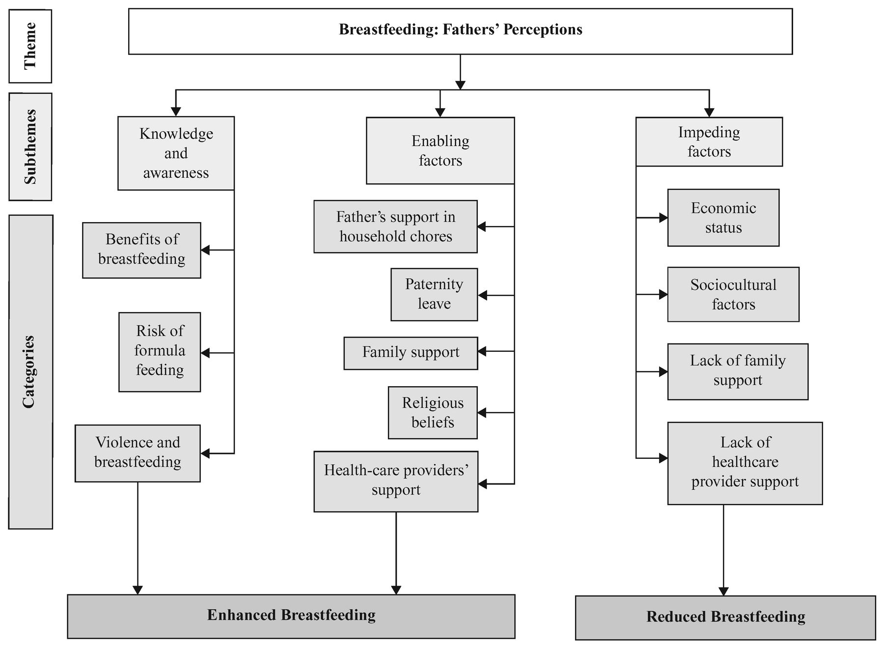 Exploring Fathers' Role in Breastfeeding Practices in the